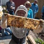 Dustin Bajer holds a frame of bees in his McCauley backyard. With his is a group of beekeeping students taking the urban beekeeping course from the John Janzen Nature Center