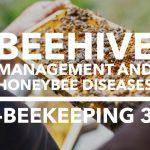 Edmnton Beekeeping Course, Beehive Management and Honeybee Diseses, Dustin Bajer