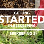Edmonton Beekeeping Course, Getting Started in Beekeeping, Dustin Bajer