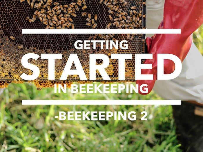 Edmonton Beekeeping Course, Getting Started in Beekeeping, Dustin Bajer