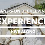 Edmonton Beekeeping Course, Hive Along, Hands On Beekeeping Experience, Dustin Bajer