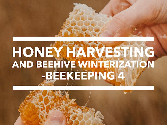 Edmonton Beekeeping Course, Honey Harvesting and Beehive Winterization, Dustin Bajer