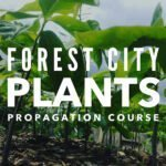 Forest City Plants, Propagation Course