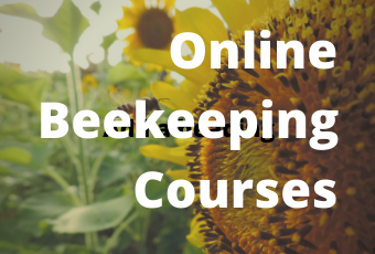 Online Beekeeping Courses Edmonton Beekeeping Course Dustin Bajer