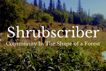 Shrubscriber Community Funded Tree Planting