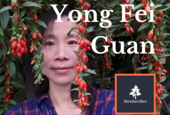 Yong Fei Guan standing in front of some Edmonton goji berry plants